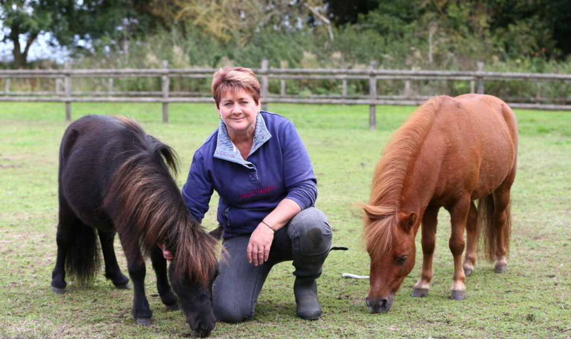 Gary and his owner Louise, with another pony